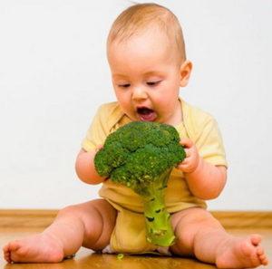 Брокколи для первого прикорма малыша